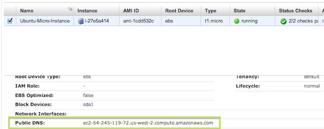 public DNS of EC2 instance