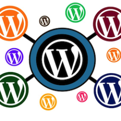 WordPress Multisite With Root Domains