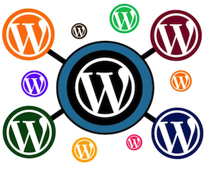 wordpress multi-site